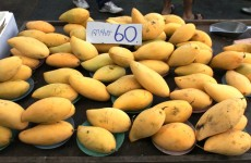 Bangkok-Mangos
